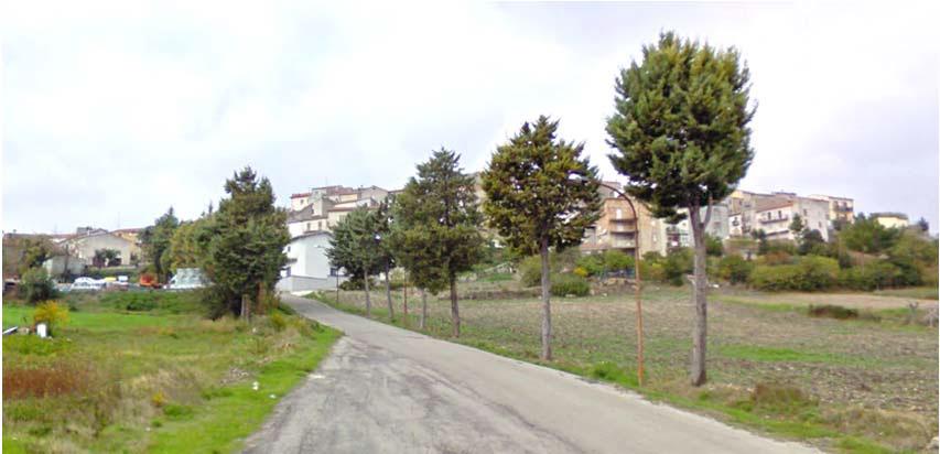 sistemazione-strada-comunale-Palata